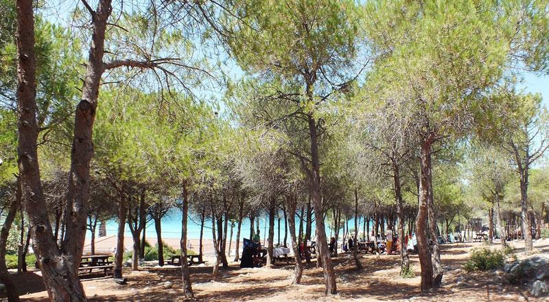 İzmir Tanay Tabiat Parkı